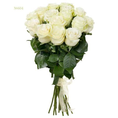 White Rose Harmony