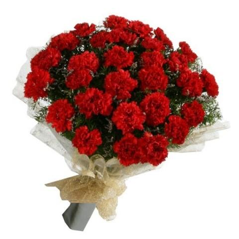 Red Carnation Handy Bunch