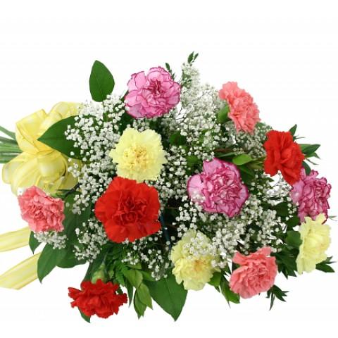 Rainbow Carnation Bouquet