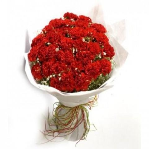 Red Carnation Sparkle