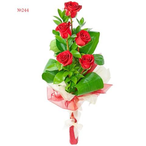 Elegant Lady Rose