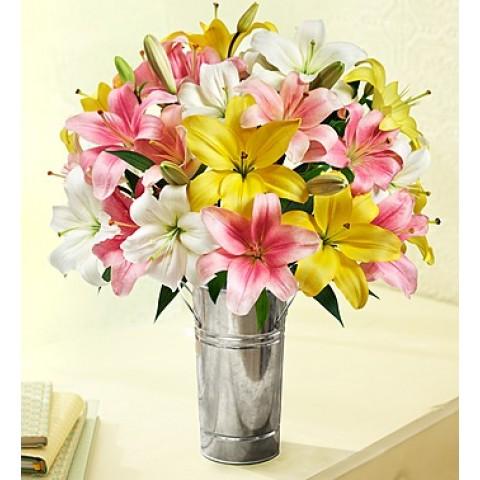 Sweet Spring lilies