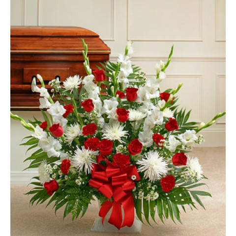 Tribute Red and White