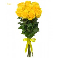 Canary Yellow Roses