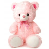 Taddy Pink Bear
