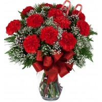 Flaming Red Carnations