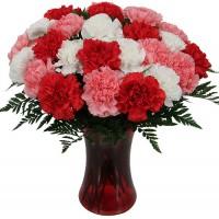 Carnation Trio Bouquet