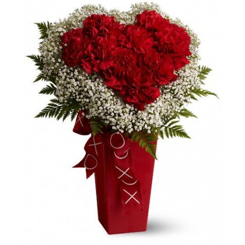 Heart & Soul of Carnations