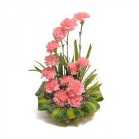 Tower of Carnation