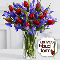Tulips & Iris Bouquet