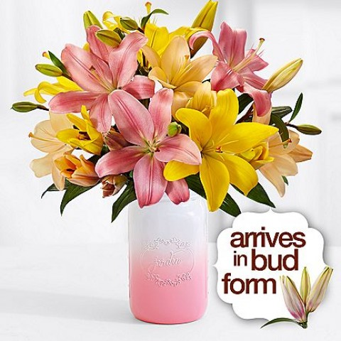 Royal Spring Lilies