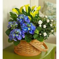 Joyful Blooms Garden