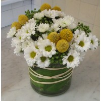 Cheery White Daisy Bouquet