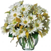 Daisy Cheer Bouquet