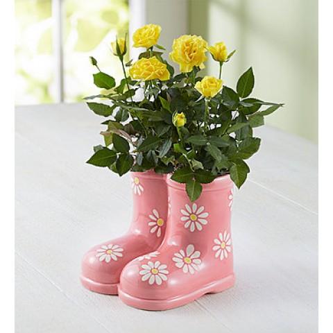 Rain Boot Roses