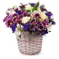 Basket of admiration