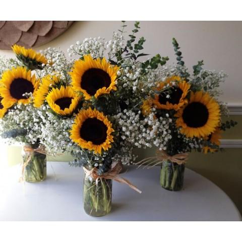 Sunflowers in Harmony