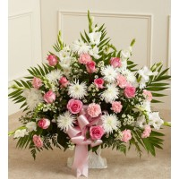 Tribute Pink&White
