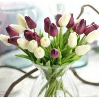 Power of Tulips