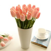 Tulips in peach
