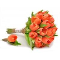 Citrus tulips